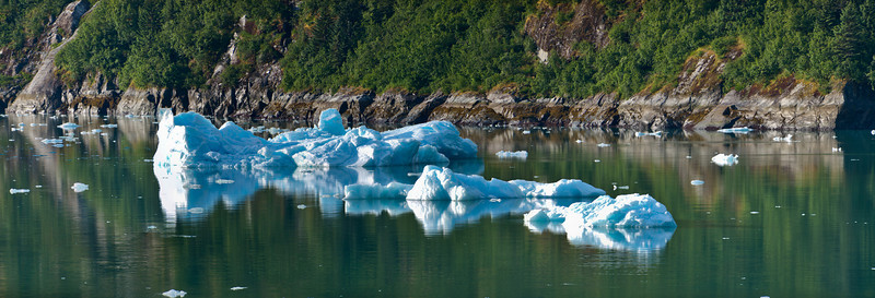 Tracy Arm_Panorama2