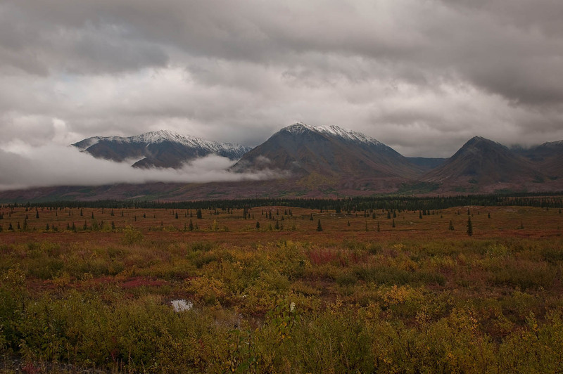 Mid-September just north of the Mat-Su Valley on the way to Fairbanks.