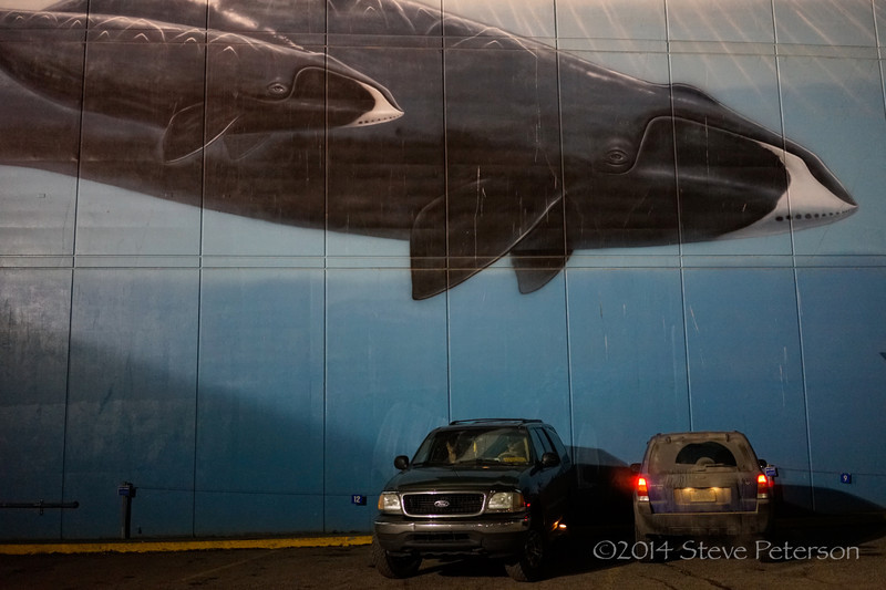 Alaska Top Ten--Whaling Wall.