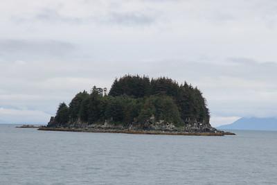 Whales and Alaska_3944