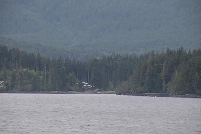 Whales and Alaska_3059