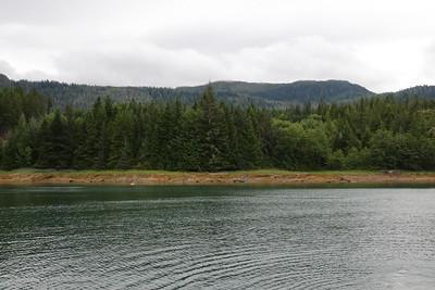 Whales and Alaska_3528