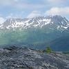 Exit Glacier-076