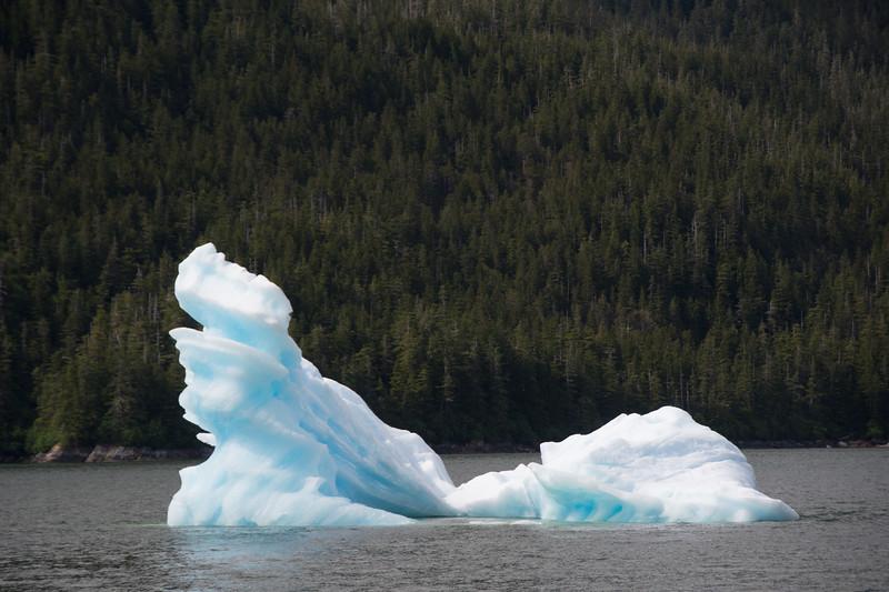 Ice dragon.  Tracy arm, Alaska.  2017