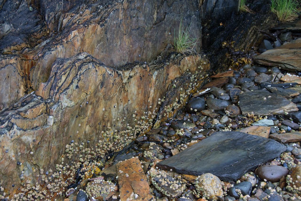 Slate & pebbles.  No name cove, Tracy arm, Alaska.  2017
