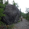 A giant boulder of igneous conglomerate.