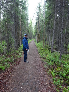 The Valdez trail, the route from Valdez to Fairbanks during Gold Rush days.