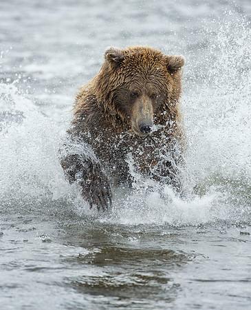 Alaska - Aug 2012