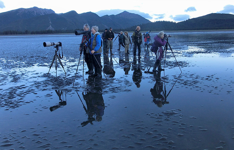 Group on the mud flats