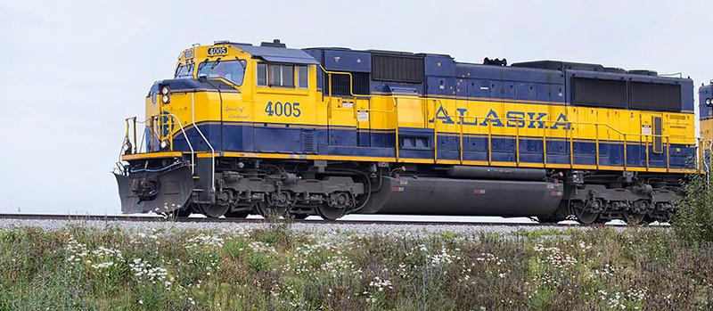 Train at Potter's Marsh