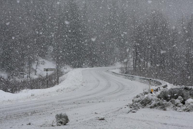 Heavy snowfall along the Haines highway near mile 25