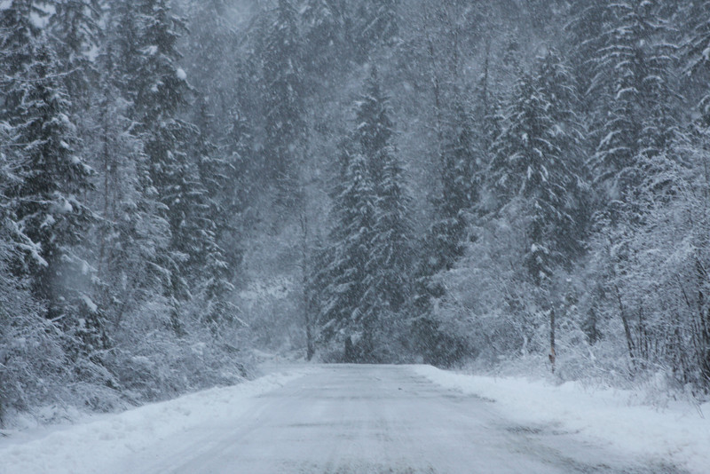 The road from our cabin