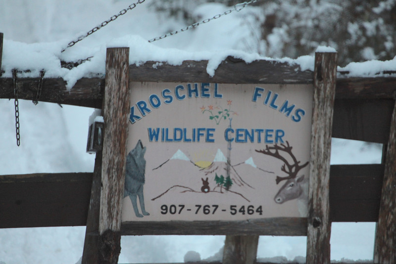 Near where we stayed is Kroschel Films, they provide refuge to lost or injured animals.  You see many of their animals in various movies!
