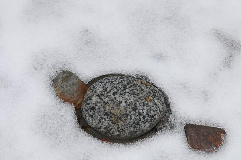 Rock in the snow at Mendenhall Glacier