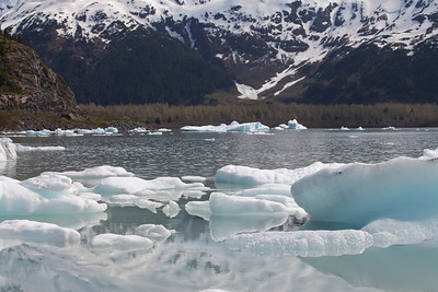 The dark material in the ice is rock that the glacial ice has scraped off the surface as it travels.