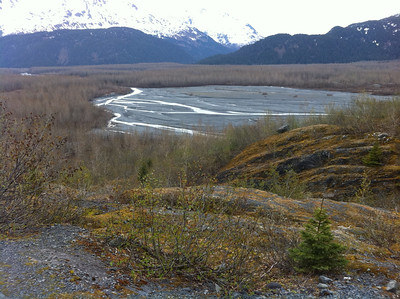 This field is covered with melting glacial water later in the year.  Here, we pause to look out over the expanse on our hike to Exit Glacier.