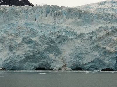 We spent quite a bit of time in front of Holgate Glacier watching the ice fall (calve) into Holgate Arm.