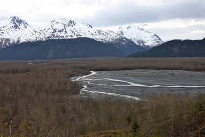 As seen from a hike up a mountain toward Exit Glacier in Seward, AK.