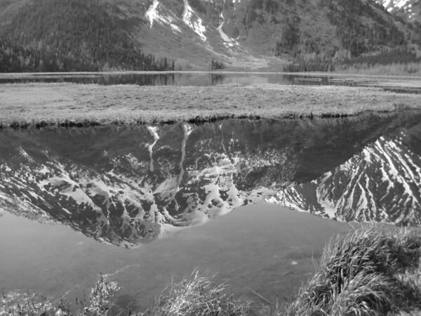Black/white reflection at Bird Point.