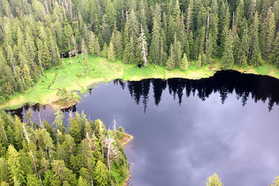 Photo from a float plane out toward Misty Fjords National Monument.