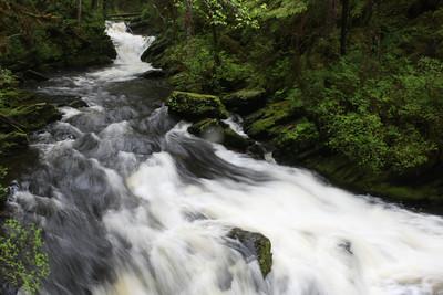 Waterfall at Settlers Cove at the North end of Tongass Highway - Ketchikan Alaska