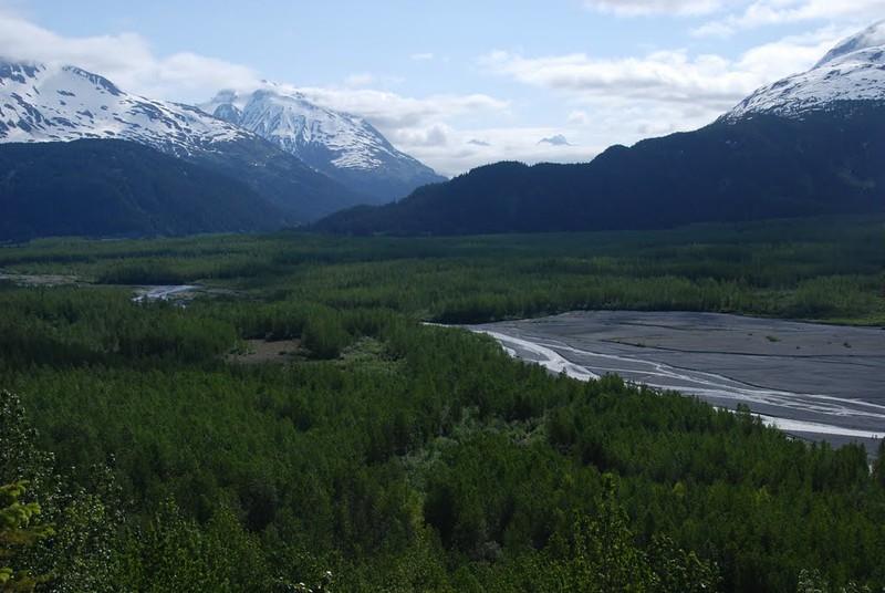 Alaska2010A051DSC_1660.JPG