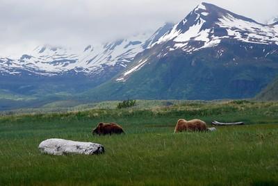 Alaska2010A146DSC_4818.JPG