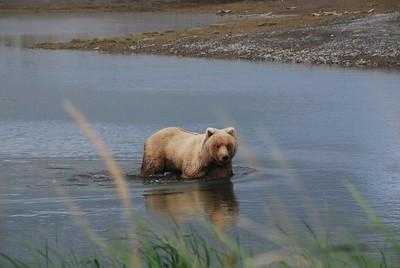 Alaska2010A157aDSC_4826.JPG