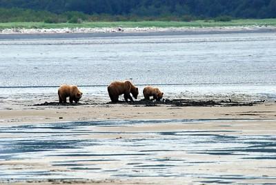Alaska2010A184DSC_2067.JPG