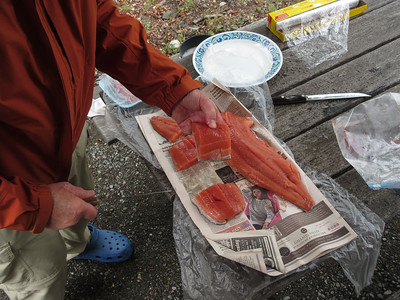 Showing off a nice cut of pink salmon.