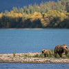 Katmai National Park | Alaska
