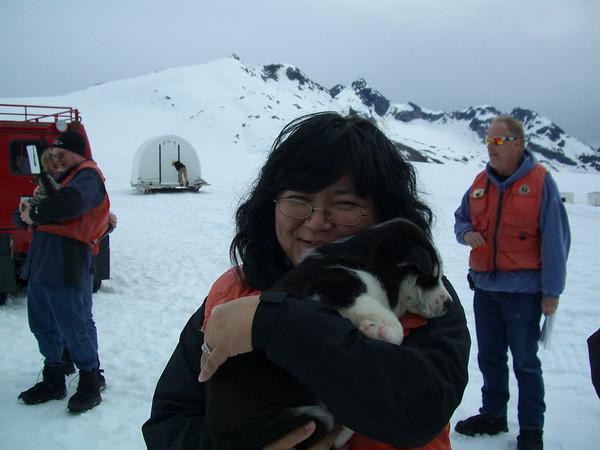 Karen Puppy Skagway
