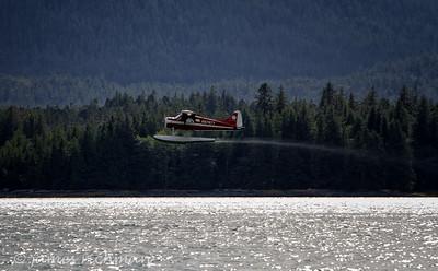 August 4 (Alaska Cruise 7D) 255-Edit