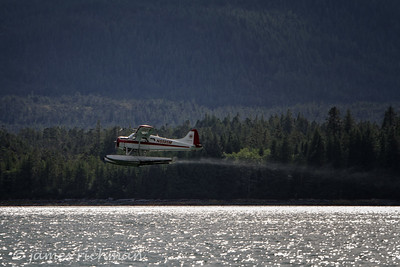 August 4 (Alaska Cruise 7D) 227-Edit