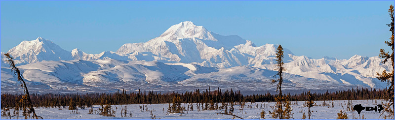 denali3_edited-1