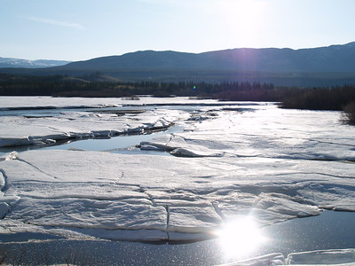 Early morning sun outside of Whitehorse as the ice breaks up on the river. This is late May, 2007.