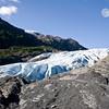 Exit-Glacier-8