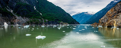 Tracy Fjord Vista