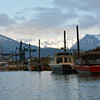 Seward Harbor, Alaska, May 2014