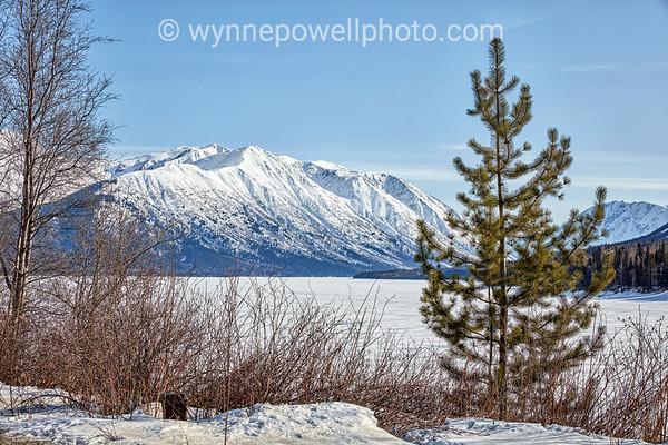 homer alaska winter mountains AA