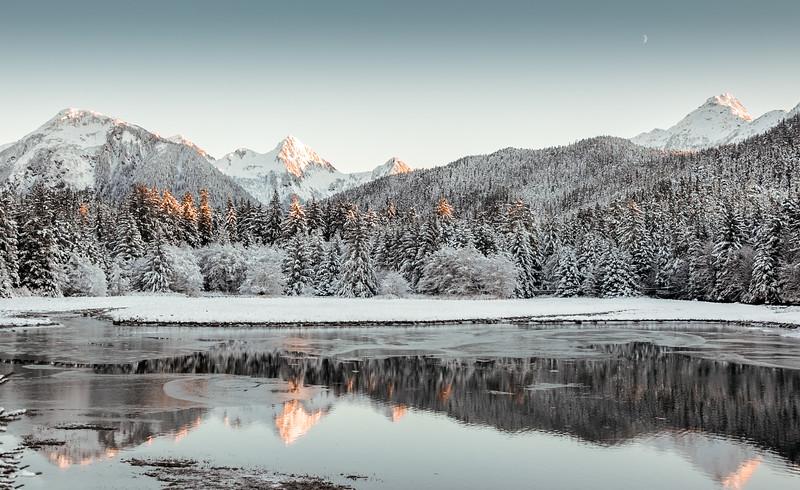 Starrgavin Winter