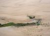 Vegetation among the sand