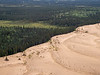 Sand dunes meet boreal forest