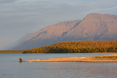 Katmai's Last Light