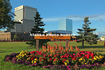 Alaska. Delaney Park in downtown Anchorage, with summer flowers.