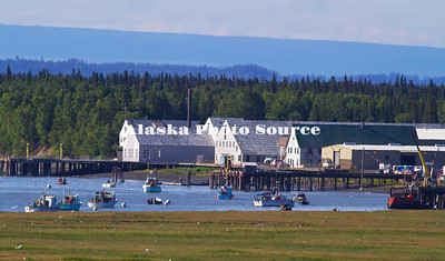 Alaska. Historic Kenai Landing, previously the Libby, McNeil and Libby Cannery in the 1920's, sold to Columbia Wards Fisheries in 1960's which became the Wards Cove Packing Company in 1983 and operated it there until1999.  Kenai Landing remains one of the best preserved longterm canneries in the U.S., and now provides a site for lodging, RV sites, boat launching, river waterfront viewing and historical tours.  Boat Dipnetters are seen in the river.