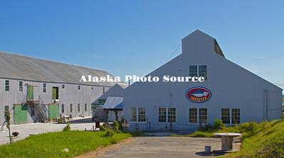 Alaska. Historic Kenai Landing, previously the Libby, McNeil and Libby Cannery in the 1920's, sold to Columbia Wards Fisheries in 1960's which became the Wards Cove Packing Company in 1983 and operated it there until1999.  Kenai Landing remains one of the best preserved longterm canneries in the U.S., and now provides a site for lodging, RV sites, boat launching, river waterfront viewing and historical tours.