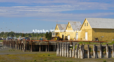 Alaska. A colorfull cannery along the Kenai River at low tide.