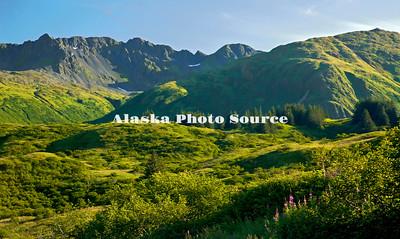 Alaska. Summer scenic view driving towards town on the Anton Larson Bay Road.