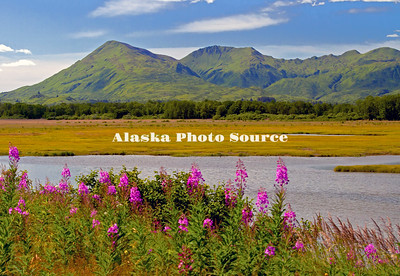 Alaska. Fireweed in the foreground of a summer scenic view of the emerald mountains along Chiniak Road, Kodiak.